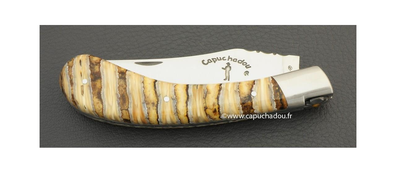 """Le """"Capuchadou-Guilloché"""" 12 cm, molaire de Mammouth fossile"""