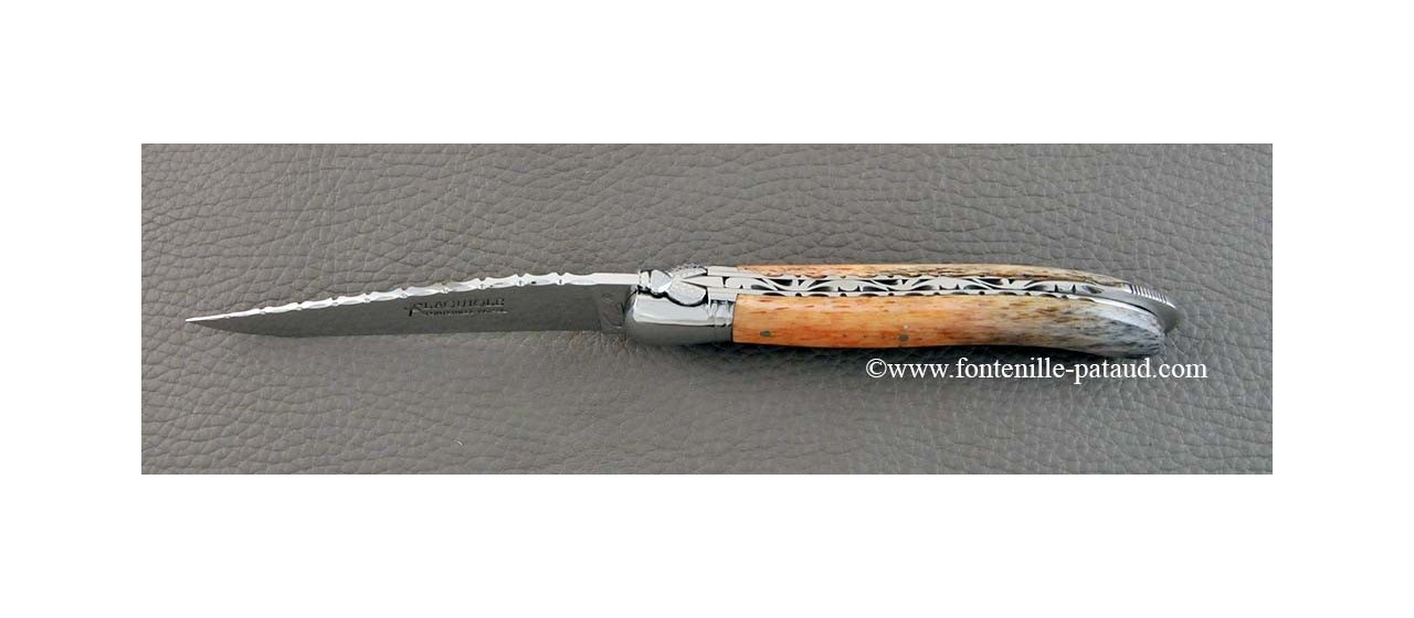 Magnique couteau laguiole haut de gamme en os de girafe stabilisé