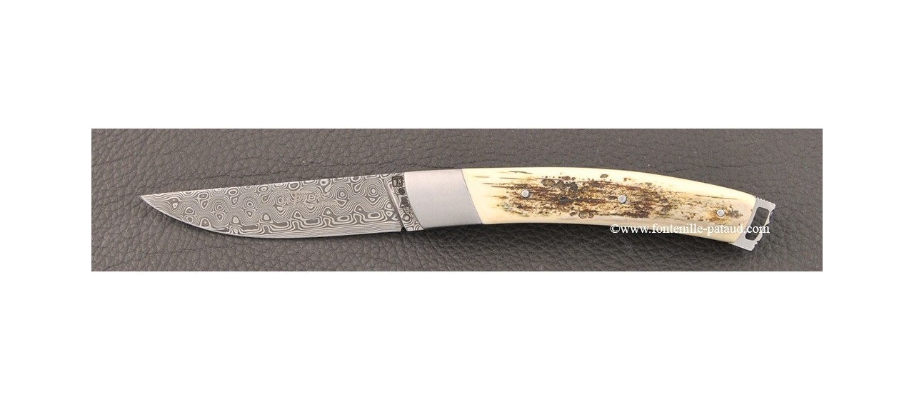 Le Thiers® Nature Damascus mammoth ivory knife