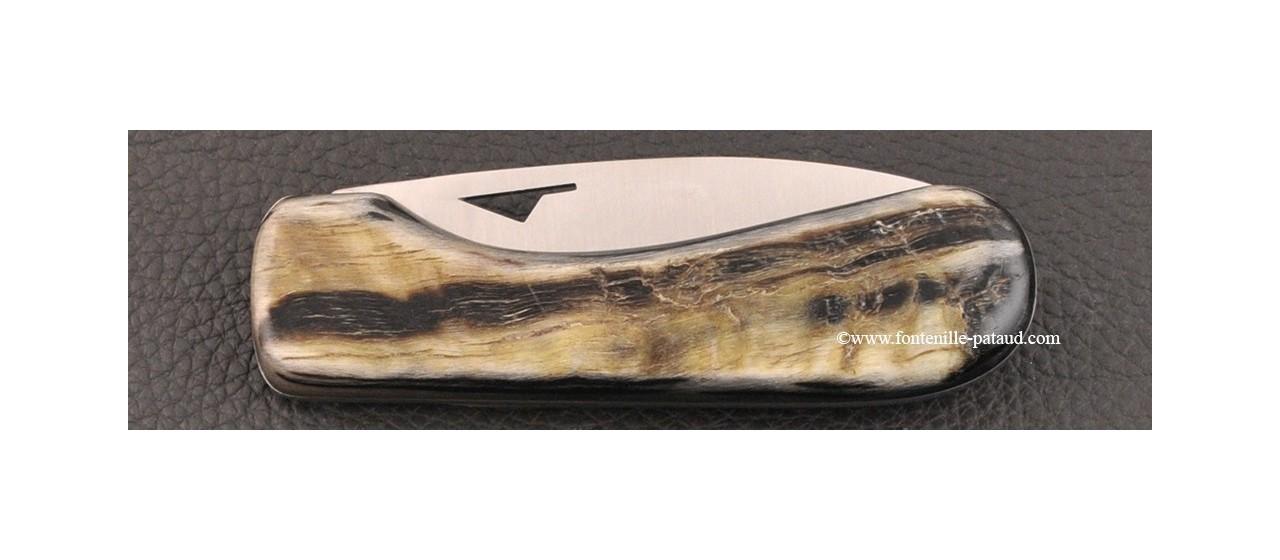 Corsican U Cumpa knife Classic range Dark ram horn