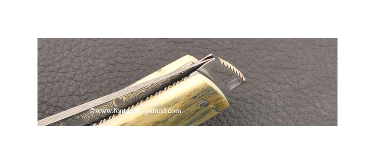 Le Thiers ® Gentleman knife Damascus Central bolster Blue mammoth delicate filework