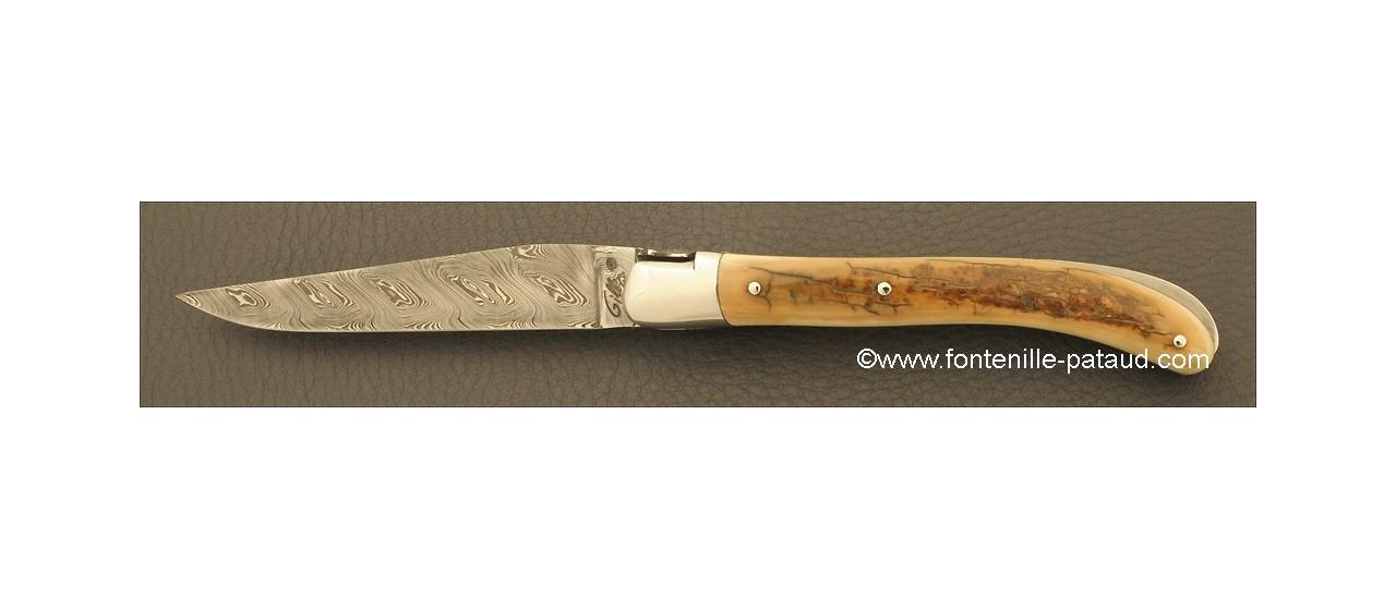Laguiole Knife Le Pocket Damascus Range Fossilized mammoth