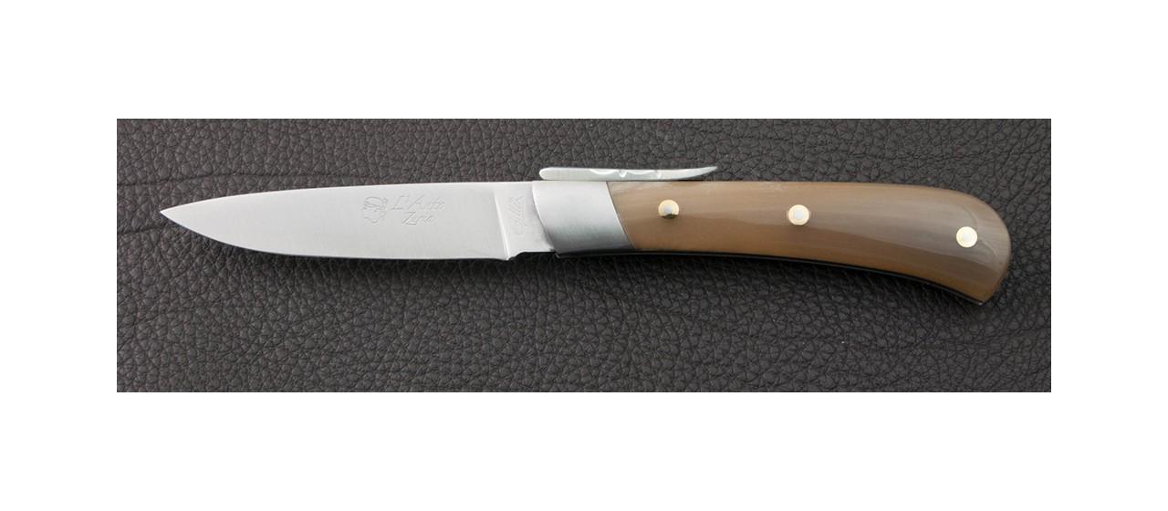 Couteau à palanquille
