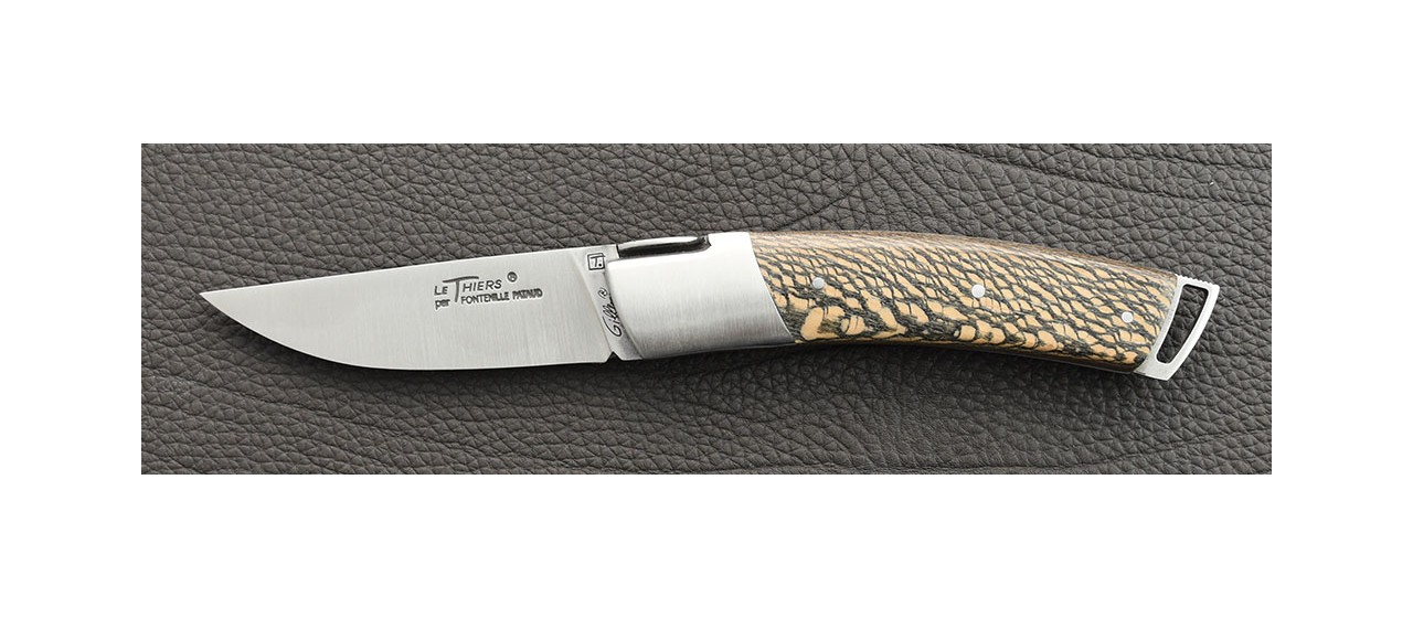 Le Thiers® Gentleman Stabilized black plane tree knife handmade in France