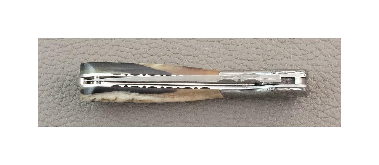 Corsican Pialincu knife Damascus range Real Ram Horn