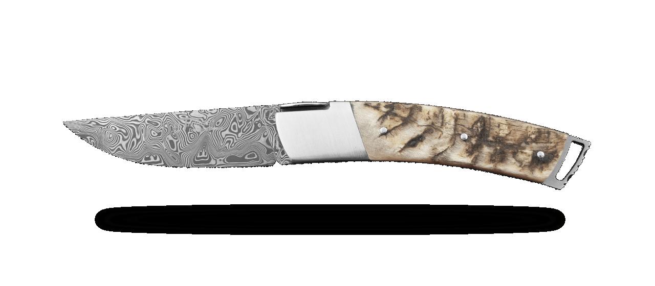 Le Thiers ® Gentleman knife Damascus Ram Horn