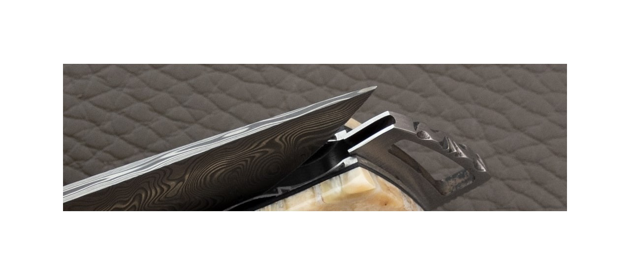 Le Thiers ® Gentleman knife Damascus White Molar tooth of mammoth