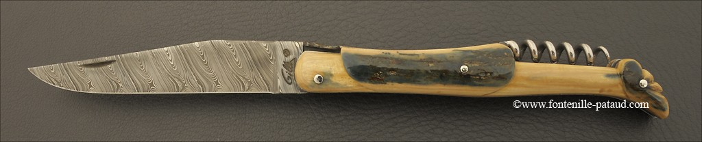 Laguiole Knife Traditional 12 cm Collection Blue mammoth ivory Delicate file work