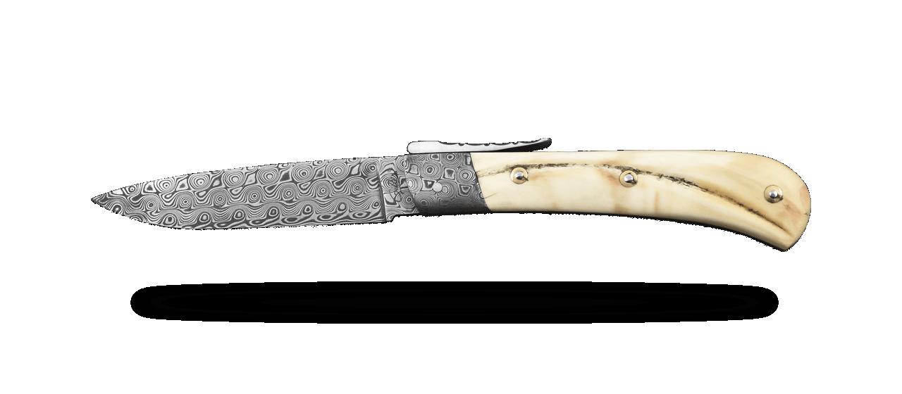 L' Antò Corse Damas Phacochère