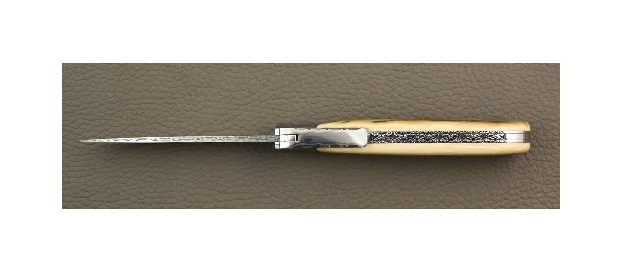 L' Antò Damascus Range Blue Fossilized mammoth, Delicate filework