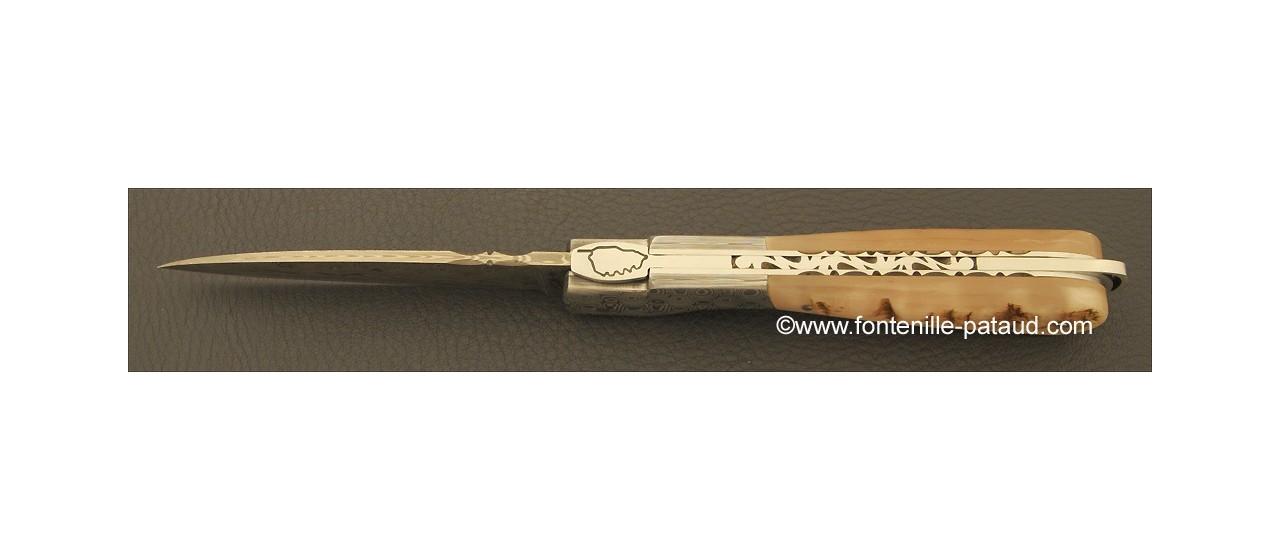 Corsican Sperone knife Damascus Range Ram horn