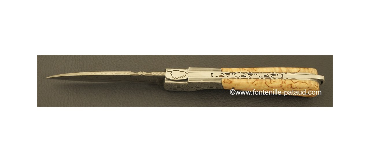 Corsican Sperone knife Damascus Range Curly birch