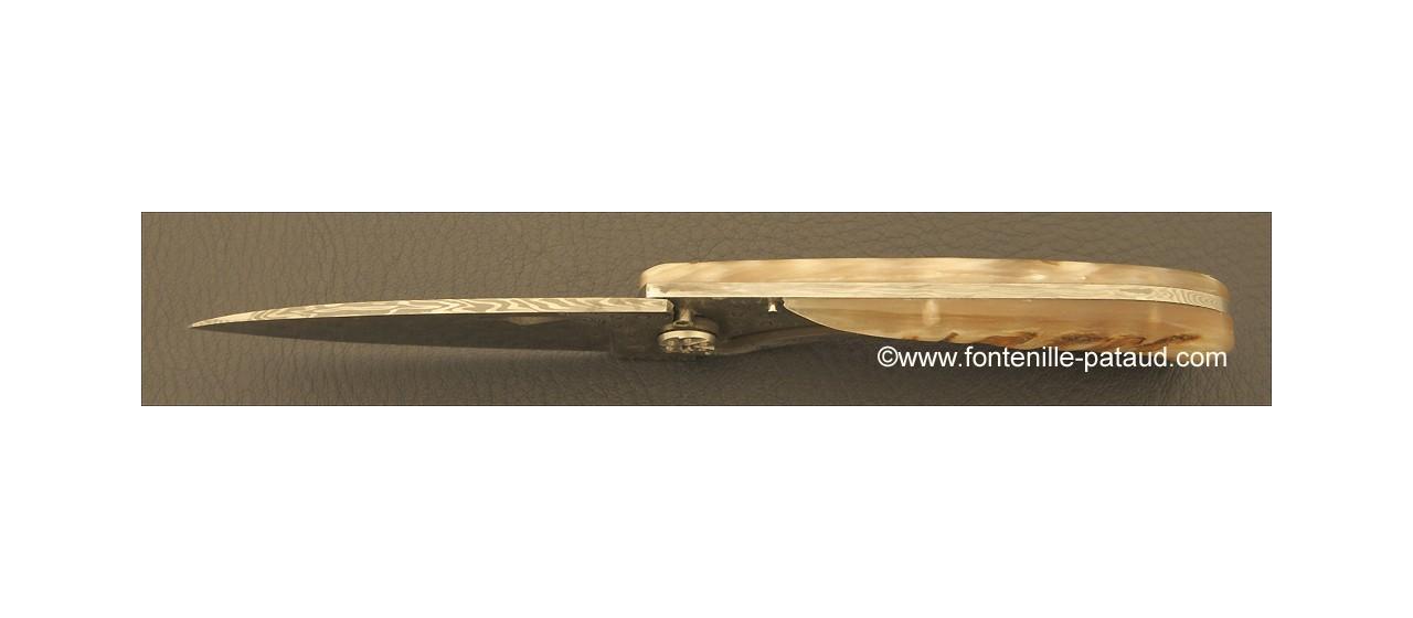 Corsican U Cumpa knife Damascus Range Ram horn