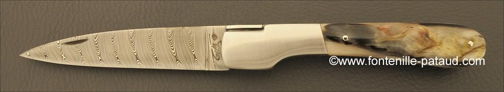 Corsican Vendetta knife Damascus Range Dark ram horn