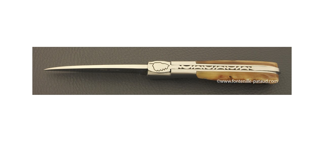 Corsican Pialincu knife Classic Range Ram horn