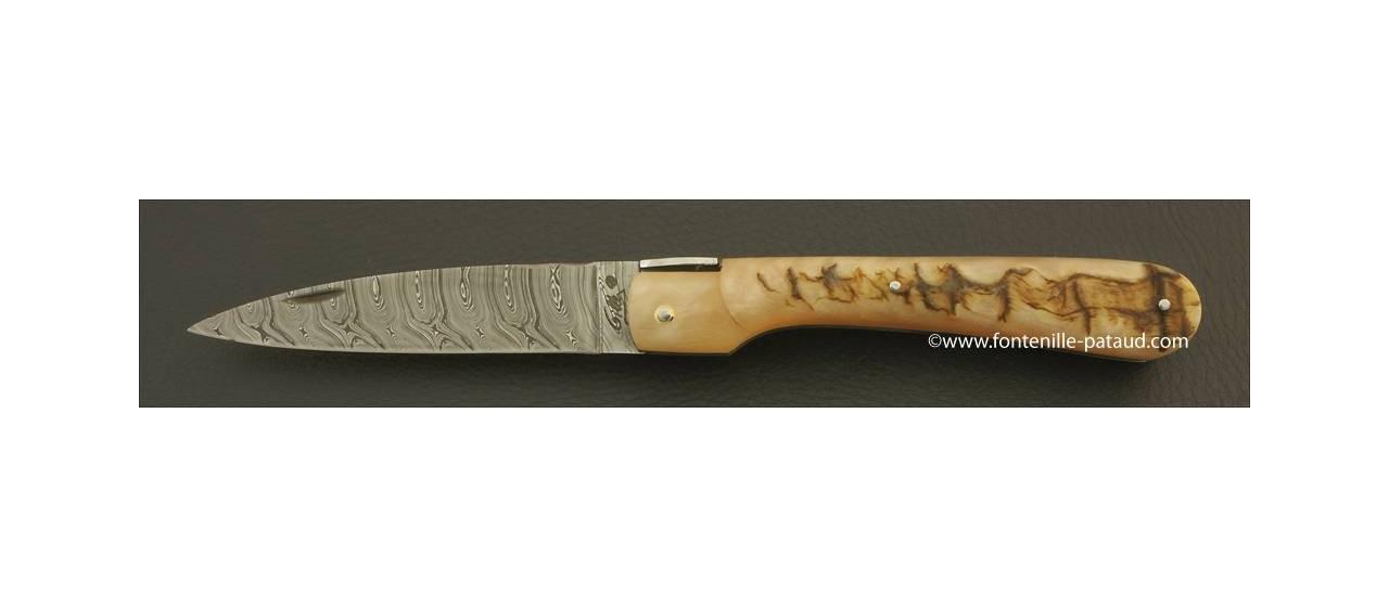 Corsican Vendetta knife Damascus Range Ram horn