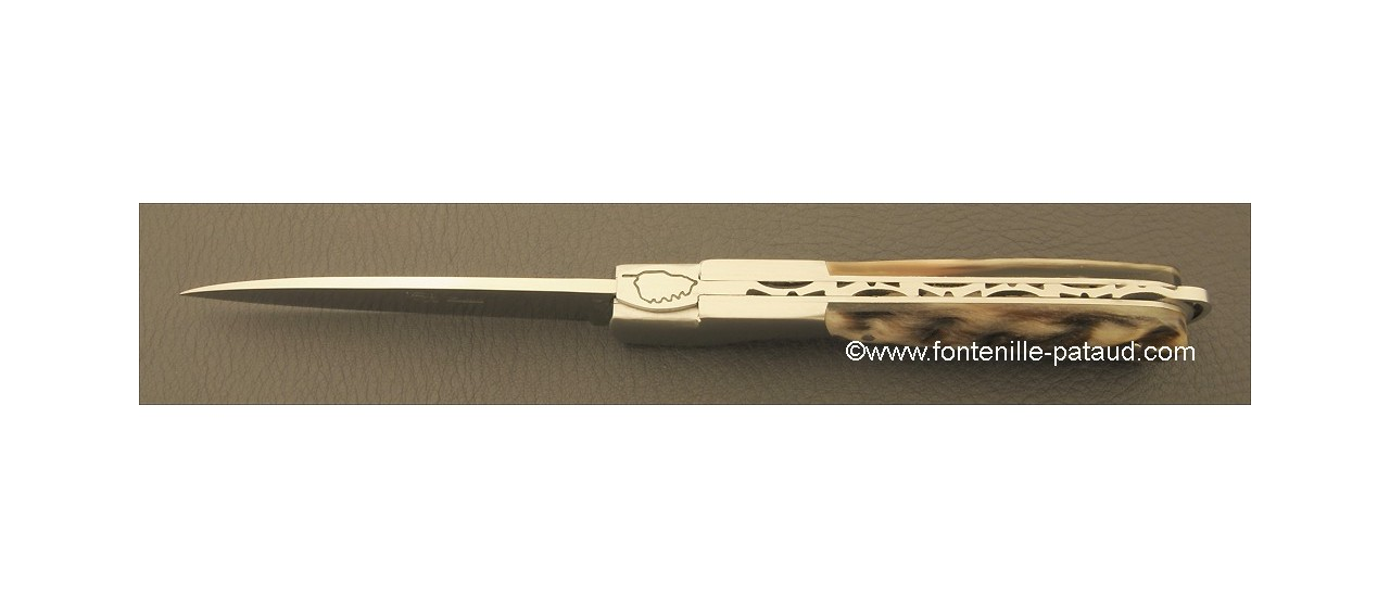 Corsican Sperone knife Classic Range Dark Ram Horn