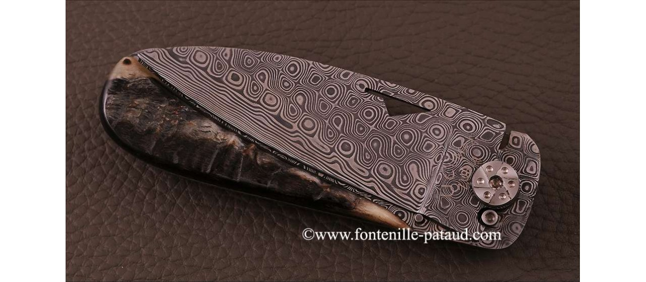 Corsican U Cumpa knife Damascus Range Dark Ram Horn