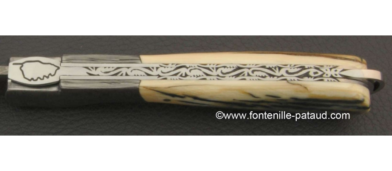 Corsican Sperone knife Collection Range Blue Mammoth fossilized Delicate file work