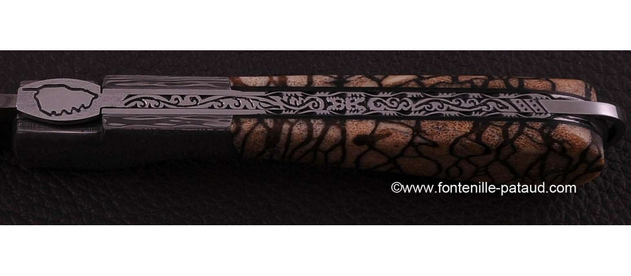 Corsican Sperone knife Collection Range Tiger Coral fossilized Delicate file work