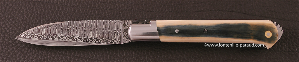 Frenchfolding knife Le 5 Coqs blue mammoth ivory and damascus blade
