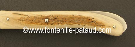 Folding knife brown fossilized mammoth ivory